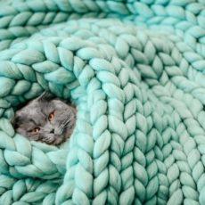 Merino hrubé deky